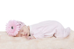 Baby pink hat sleeping Stock Images