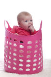 Baby in a pink plastic laundry basket Royalty Free Stock Image