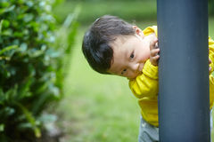 Baby play hide and seek. Cute baby boy play hide and seek Stock Photography