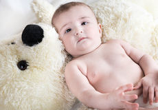 The baby is playing with  bear Stock Photos