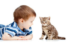 Baby playing with cat pet stock images
