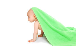 Baby playing crawling under the bright green towel Stock Images