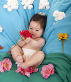 Baby playing with flowers Stock Images