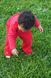 Baby playing on the grass Stock Images