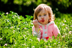 Baby playing in grass Royalty Free Stock Images