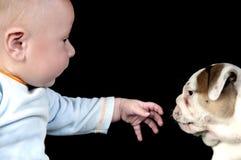 Baby playing with his dog. Baby playing with his pet stock photo