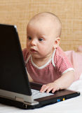 Baby playing with a laptop Stock Image