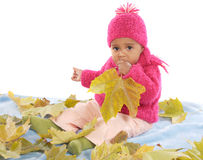 Baby playing with leaves Royalty Free Stock Photos