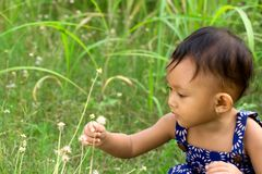 Baby playing in nature royalty free stock images