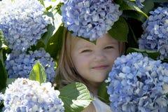 Baby playing in purple chrysanthemum. In the garden Stock Photos