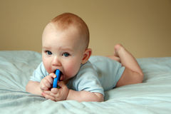Baby playing with rattle Royalty Free Stock Images