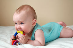Baby  playing with rattle Royalty Free Stock Photography