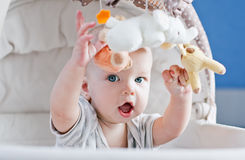Baby playing sitting in the cradle. Baby boy playing sitting in the cradle with mobile toy royalty free stock photo