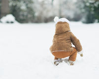 Baby playing with snow in winter park . rear view Royalty Free Stock Images