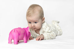 Baby playing with a toy. Baby playing with pink pig toy Stock Photography