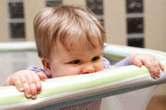 Baby in playpen Royalty Free Stock Photography