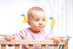 Baby in playpen. Baby in the playpen looks serious and concentrated Royalty Free Stock Photos