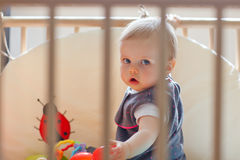 Baby in playpen Royalty Free Stock Photo