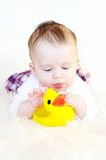 Baby plays with rubber duckling Stock Photo