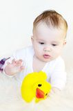 Baby plays with rubber duckling Stock Image