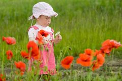 Baby with poppies Stock Photography