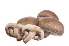 Baby Portobello Mushrooms Stock Images