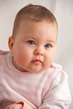 Baby portrait. Portrait of beautiful seven month old baby girl Royalty Free Stock Photo