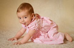 Baby Portrait. A portrait of a cute caucasian baby or toddler on smooth background Stock Photography