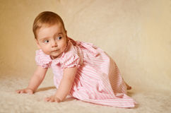 Baby Portrait. A portrait of a cute caucasian baby or toddler on smooth background Stock Photos