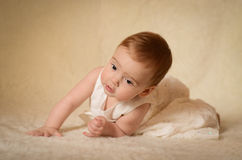 Baby Portrait. A portrait of a cute caucasian baby or toddler on smooth background Royalty Free Stock Photos