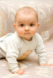 Baby portrait. Bright portrait of adorable baby Stock Photos