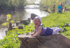 Baby portrait on a stump Stock Photography