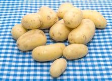 Baby potato Royalty Free Stock Image
