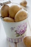 Baby potatoes. In the bucket Royalty Free Stock Photos