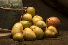 Baby potatoes. A display of baby potatoes, and onions is placed on a piece of dark brown jute material beside a green terracotta pot Royalty Free Stock Image