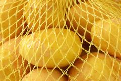 Baby potatoes in netting. Detail of baby potatoes in netting sack Royalty Free Stock Photo