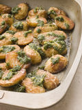 Baby Potatoes roasted with Pesto Royalty Free Stock Photos
