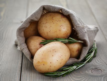 Baby potatoes in sack bag with rosemary Stock Photography