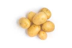 Baby Potatoes. Small Stock Photo