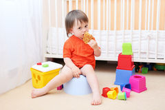 Baby on potty eating biscuit. Lovely baby boy sitting on potty and eating biscuit royalty free stock photo