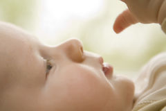 Baby profile checking out hand, soft focus. Infant boy looking at his hand with soft focus Royalty Free Stock Photos