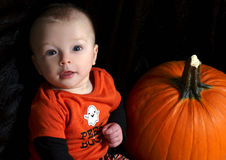 Baby beside pumpkin Royalty Free Stock Image