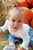 Baby in Pumpkin Patch Royalty Free Stock Photography