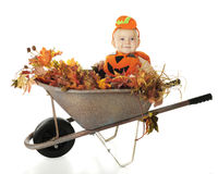 Baby from the Pumpkin Patch Stock Photos