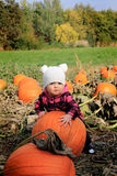 Pumpkin patch baby Stock Photography