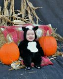 Baby with pumpkins Stock Photo