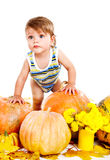 Baby among pumpkins Royalty Free Stock Photo