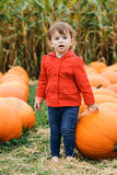 Baby with pumpkins, Halloween Royalty Free Stock Image