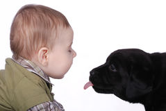 Baby and puppy. Baby and little labrador retriever puppy stock photos