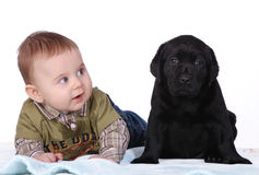 Baby and puppy. Baby and little labrador retriever puppy royalty free stock photography